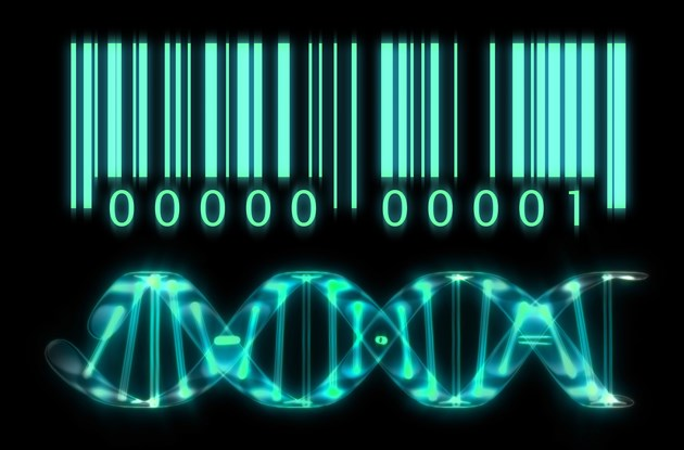 DNA barcoding in the spotlight at 2018 FBIP Forum