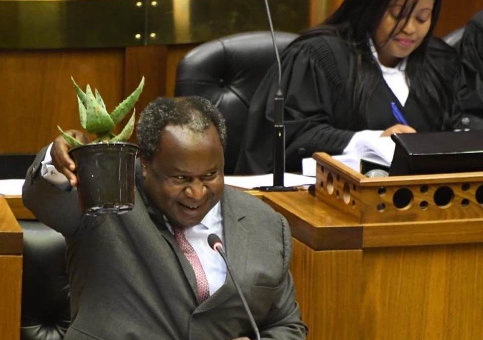 Budget 2020: All you need to know about Mboweni's 'Totem Plant'
